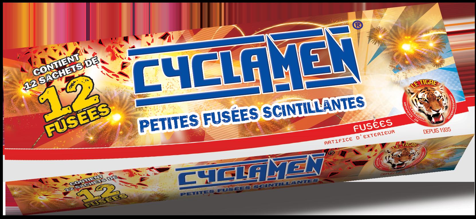 P152340-P052159-cyclamen-2020-box-site