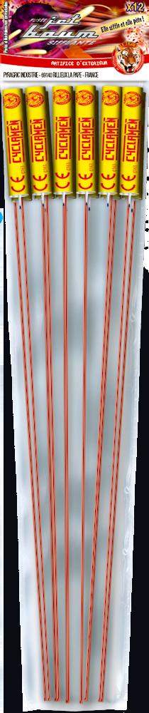 P152340-P052159-cyclamen-2020-sachet-site